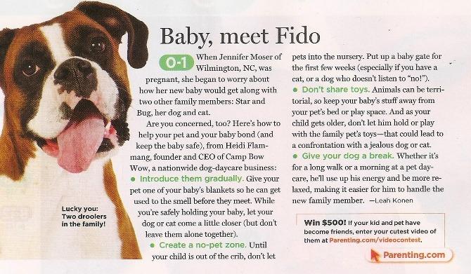dog-baby-use